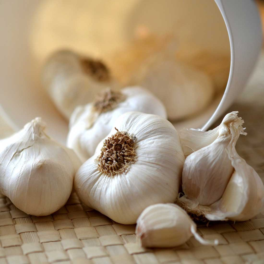 5 Health Benefits of Garlic